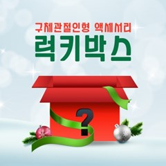 무료배송 구체관절인형 액세서리 럭키박스