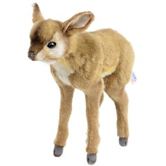 4935 아기사슴 부시벅 동물인형/30cm.H_(1466085)