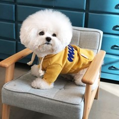 [mungmoong] Mignon 난로 후드 티셔츠 (옐로우)