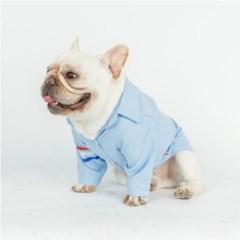 솔리드 강아지 셔츠 2color