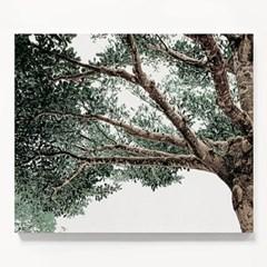 캔버스 자연 풍경 식물 모던 인테리어 액자 나무 그늘 D