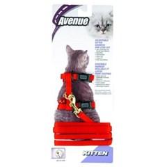 에비뉴 고양이 하네스 키튼(레드)_(1264491)