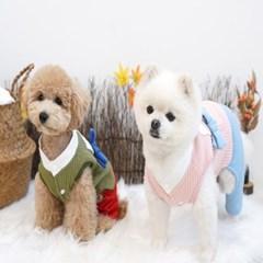 강아지옷 새신랑 한복 2color