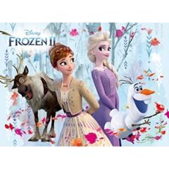 80피스 겨울왕국2 눈의 숲 판퍼즐 PL80-22d_(1076871)