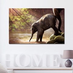 캔버스액자 자연 세렝게티 아기코끼리 B타입 35x35cm_(2480644)
