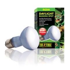 파충류 바스킹 스팟 램프 50w / PT-2131_(1030841)