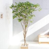 라인_올리브나무 220cm 조화 인조 나무 인테리어 FREOFT_(1689476)
