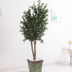 올리브나무 200cm 빈티지 5-5 조화 인조 나무 인테리어_(1689436)