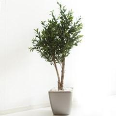 올리브나무 170cm 메탈 5-7 조화 인조 나무 인테리어 FR_(1689431)