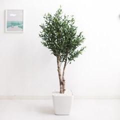 올리브나무 170cm 아크릴 5-5 조화 인조 나무 인테리어_(1689430)