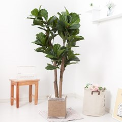 떡갈고무나무 170cm 로프 5-5 조화 인조 나무 인테리어_(1689428)