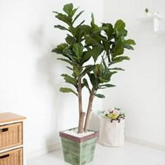 떡갈고무나무 170cm 빈티지 5-5 조화 인조 나무 인테리_(1689427)