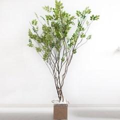라인-느티나무 210cm 로프 5-5 조화 인조 나무 인테리어_(1689423)