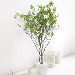라인-느티나무 210cm 아크릴 5-5 조화 인조 나무 인테리_(1689420)