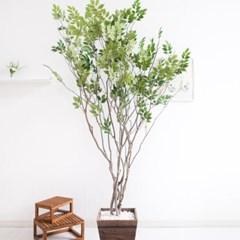라인-느티나무 210cm 우드 5-5 조화 인조 나무 인테리어_(1689419)