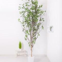 A자형자작나무320cm 아크릴5-5 조화 인조 나무 인테리어_(1689411)