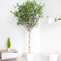 기본Y자형 자작나무 230cm 아크릴 5-5 조화 인조 나무_(1689407)