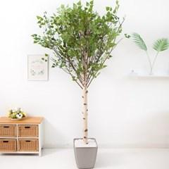 기본Y자형 자작나무 230cm 메탈 5-7 조화 인조 나무 인_(1689406)