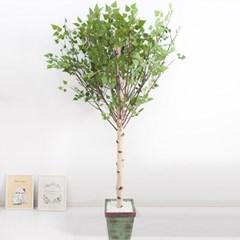 기본Y자형 자작나무 230cm 빈티지 5-5 조화 인조 나무_(1689405)