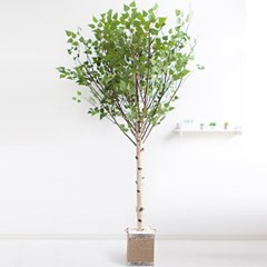 기본Y자형 자작나무 230cm 로프 5-5 조화 인조 나무 인_(1689404)