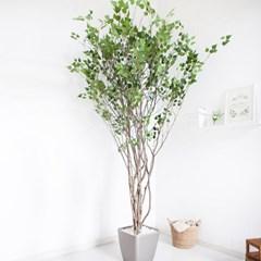 라인-자작나무 245cm 메탈 5-7 조화 인조 나무 인테리어_(1689401)