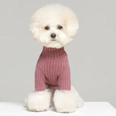 강아지 투톤니트 5color