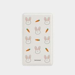rabbit 패턴 보조배터리_(880627)