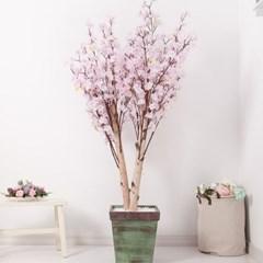 쌍대벚꽃나무화분set 200cm K 조화 인조 나무 인테리어_(1689397)