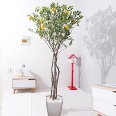 라인-레몬나무화분set 210cm K 조화 인조 나무 인테리어_(1689390)