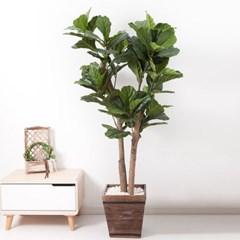 떡갈고무나무화분set 170cm K_M 조화 인조 나무 인테리_(1689388)