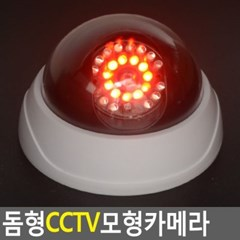 CCTV 모조카메라 1개