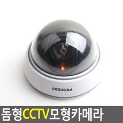 기본형 CCTV 모형카메라 1개