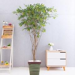 라인-올리브나무화분set 210cm 조화 인조 나무 인테리어_(1689369)