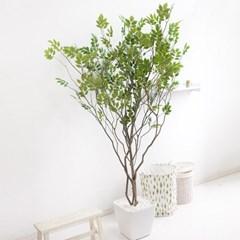 라인-느티나무화분set 210cm 조화 인조 나무 인테리어 F_(1689367)