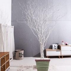 라인-화이트소원나무화분set 240cm 조화 나무 인테리어_(1710547)