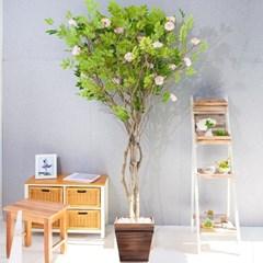 라인-지니아나무화분set 240cm 조화 인조 나무 인테리어_(1710545)
