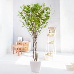 라인-지니아나무화분set 210cm 조화 인조 나무 인테리어_(1710544)