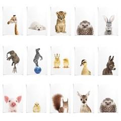 아이방 인테리어 동물 포스터 39종