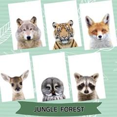 아이방 정글숲 동물포스터 6장세트 A4사이즈