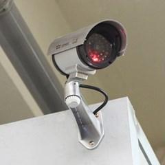 고급 원형 모형 감시 카메라/인테리어샵판매용 문구