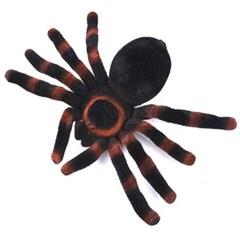 독 거미모형 20cm
