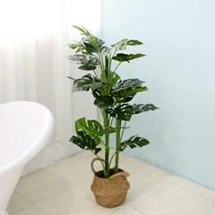인조나무 화분 인테리어나무 조화 소품 그린 라인몬스테라 110cm