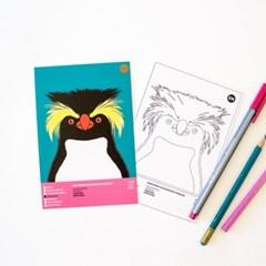 북부바위뛰기펭귄 멸종위기동물 컬러링 엽서 2in1