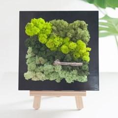 블랙 스칸디아 액자set 20cmP 공기정화 식물 조화_(1732834)