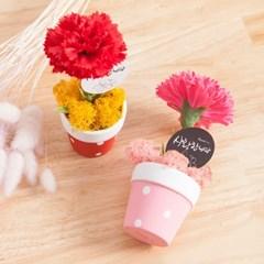 봄봄비누 카네이션 화분set 14cm_CP_V2 조화 어버이날 스승의날 선물