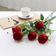 장미꽃 조화 로즈데이 성년의날 프로포즈 로맨틱 5송이 장미