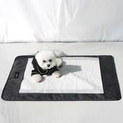 [루이까몽] 두다 강아지 배변 보조패드 양면방수 식기매_(1497494)