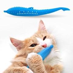 펫디아 냥치카 고양이 셀프 칫솔_(2325614)