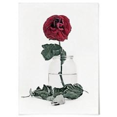 패브릭 포스터 F324 모던 장미 꽃 사진 액자 Red rose