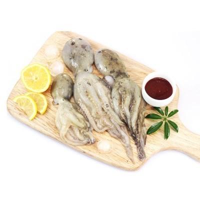 지금이 딱 제일 맛있다. 쭈꾸미, 갑오징어, 민물장어 주말특가